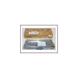 Toner Noir Ricoh Type 125 (400838)