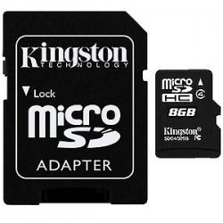 C'est cadeau !  1 carte microSDHC  8 GB  Kingston avec adaptateur (*)